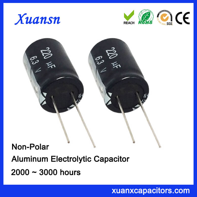 General Electrolytic Capacitor 220UF6.3V 2000Hours CE RoHS Approval